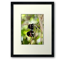 Hanging on a Moment Framed Print