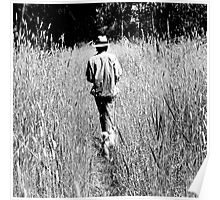 Tall Grasses Poster