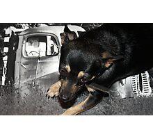 Black Betty Photographic Print