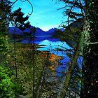 Kananaskis - Foothills Of The Rockies by Al Bourassa