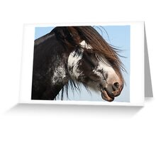 Draught Horse 1 Greeting Card