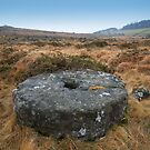 Dartmoor: Abandoned Millstone on Belstone by Rob Parsons