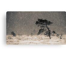 'Under the Snowstorm I' Canvas Print