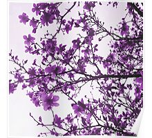 Purple Flowers in Bloom Poster