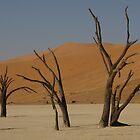 Deadvlei trees by ShotByArlo
