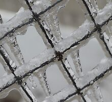 Icy Grid by Nadine Rippelmeyer