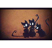 Oneiroi Kitties Photographic Print