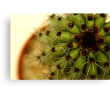 Saguaro Cactus? Canvas Print