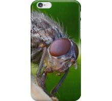Fly Up Close iPhone Case/Skin
