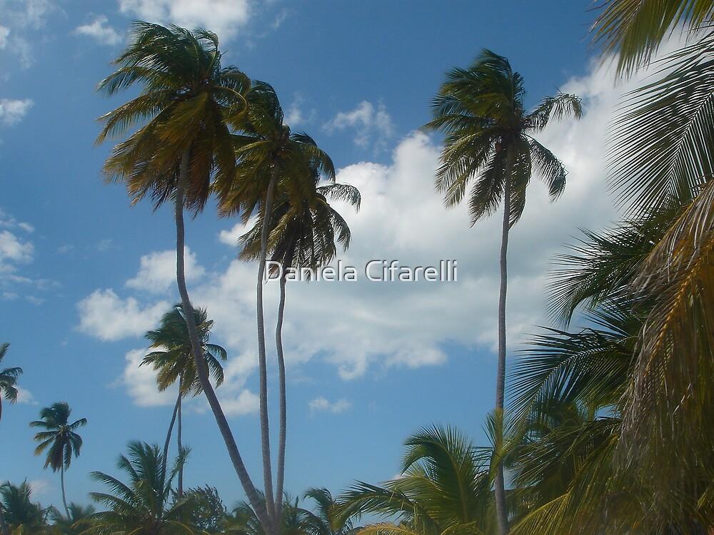 SABOR DOMINICANO - Caribbean's flavor by Daniela Cifarelli