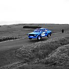 Rally by Mike Butchart