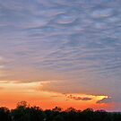 Mammatus Clouds by Van Coleman