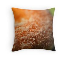 Sugar Doughnut Texture Throw Pillow