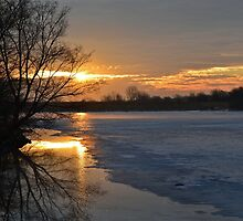 Icy Dawn by Leona Bessey