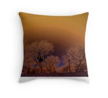 Water front(lakeshore)... Throw Pillow