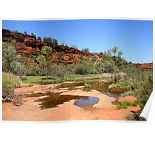 Palm Valley Riverbed Poster