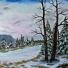 Winter Serenity by Jack G Brauer