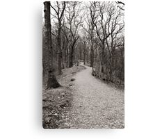 The path through the woods Canvas Print