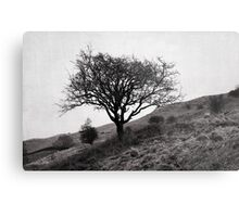 The tree of the fell Metal Print