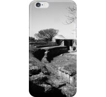 Paestum: archaeological site theater iPhone Case/Skin