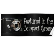 Featured Artwork Banner for the Compact Group Poster