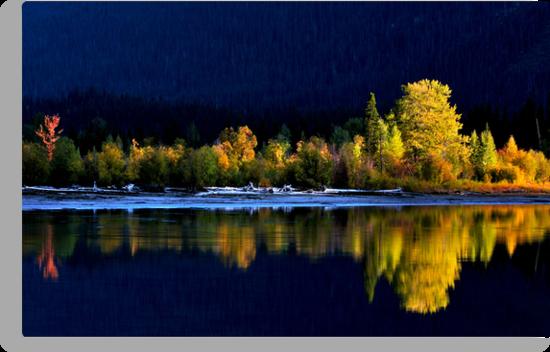 Moose Lake, reflections, in fall. Jasper National Park, Alberta, Canada. by photosecosse /barbara jones