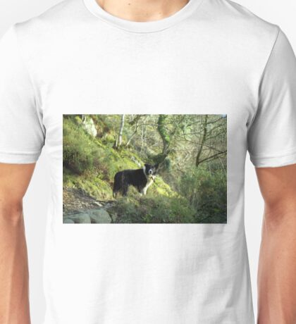 Indy, King of the woods. Unisex T-Shirt
