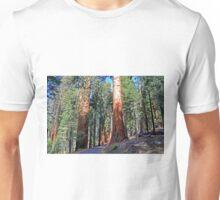 Sequoia Drive Unisex T-Shirt