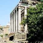 Sideview Temple of Antoninus and Faustina, Rome, Italy by hojphotography