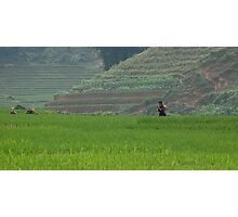 A Valley Near Sapa Photographic Print