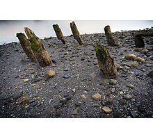 woodhenge Photographic Print