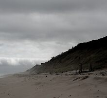 Misty Dunes by noshin