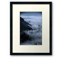 Nature's Dance Framed Print