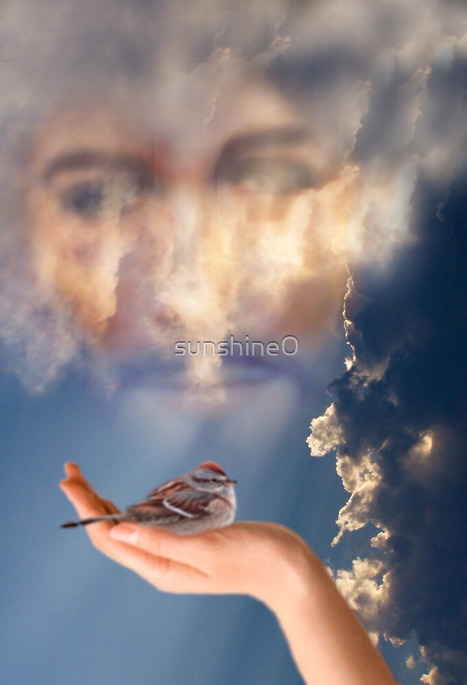 His eyes are on the sparrow and I know He's watching over me by sunshine0