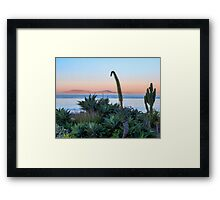 Morning Walk at San Antonio Del Mar Mexico Framed Print