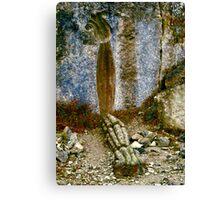 Fallen Fossil Canvas Print