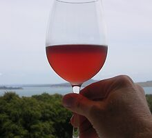 Red wine at Mudbrick Winery Waiheke  by JayKay