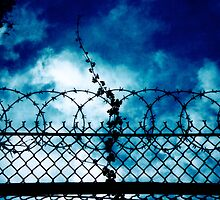 prison break season 2 by pedrodyliacco