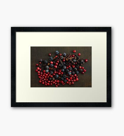 Different spice berries  Framed Print
