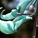 Green Jade Vine by Teresa Zieba