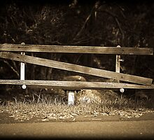 Broken Bench by David Petranker