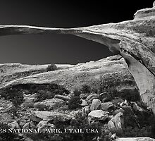 ARCHES NATIOANAL PARK UTAH (CARD) by Thomas Barker-Detwiler
