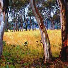 Snow Gum Oberon by Greg Coggiola