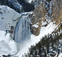 The Winter Melt - Lower Yellowstone Falls  by Barbara Burkhardt