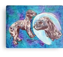 Bedlington Terrier Metal Print