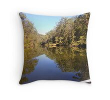 Reflections in the river Throw Pillow