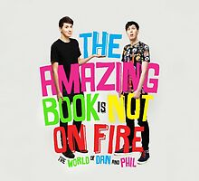 The Amazing Book Is Not On Fire by Dominique Demetz