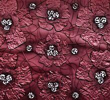 Poppy Flower by Yukska