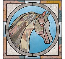 Stained Glass Map Horse Photographic Print