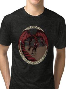 How Not To Slay A Dragon Tri-blend T-Shirt